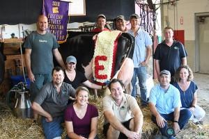 BigE18_Holstein-5919